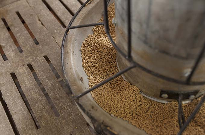 Animal Feed and Other Industries